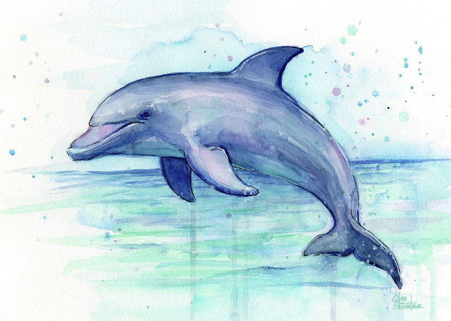 900x642 Dolphin Watercolor Painting By Olga Shvartsur
