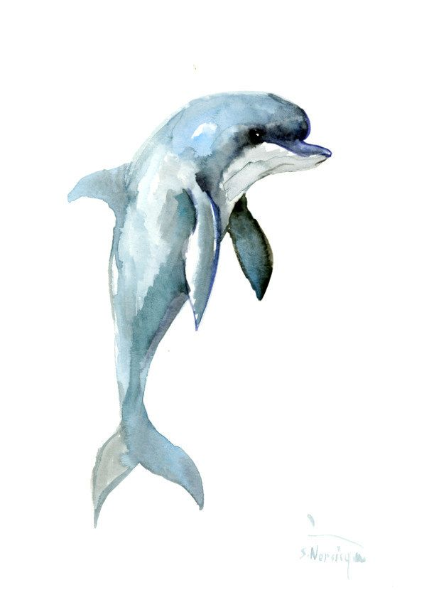604x830 Dolphin, 12 X 9 In, Original Watercolor Painting 12 X 9 In