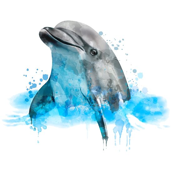 550x550 Dolphin, Watercolor Dolphin, Dolphin In Water Posters By