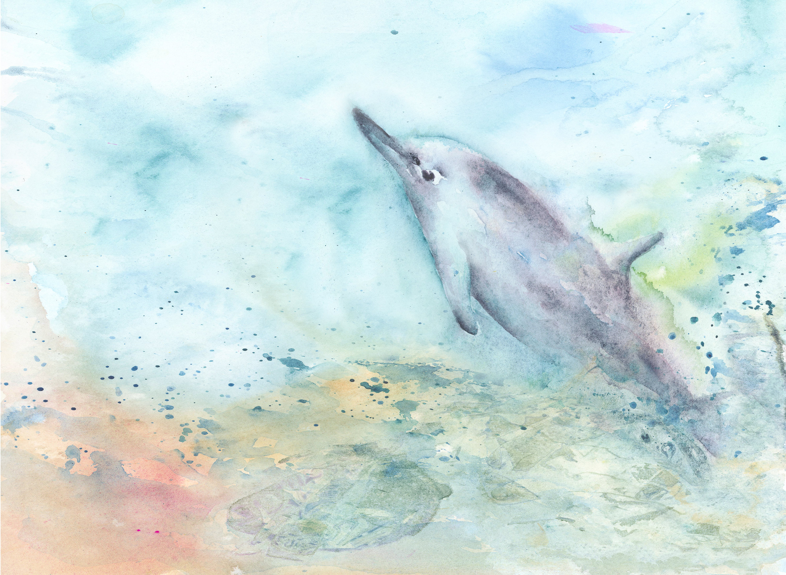 3000x2197 Dolphin Art Dolphin Watercolor Painting Dolphin Print Girl Etsy