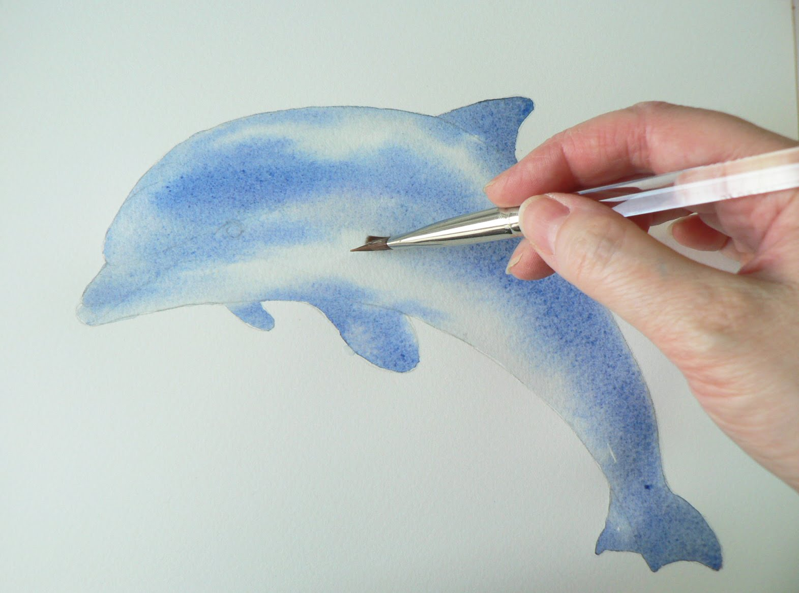 1571x1166 Dolphin Watercolor Demo 12 Step Painting Alison Fennell Art