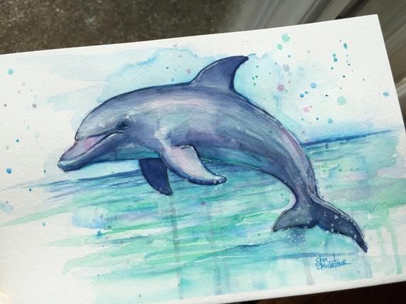 570x427 Dolphin Watercolor Painting Dolphin Art Sea Creatures Etsy