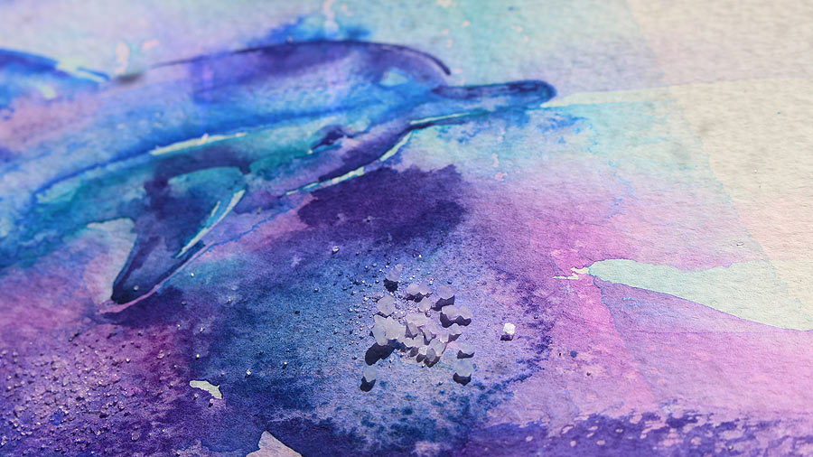 900x506 Watercolor Dolphin Paint