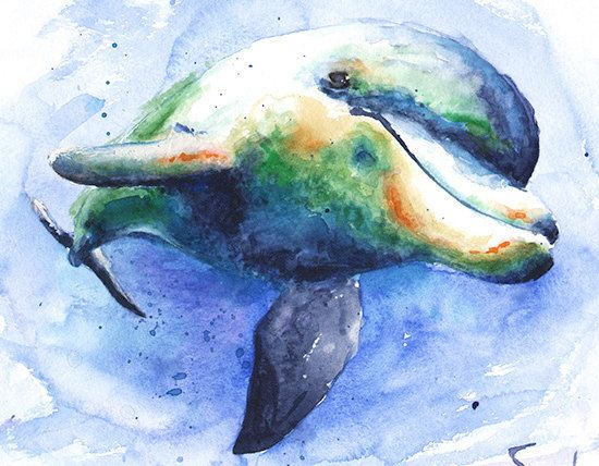 550x428 Dolphin Painting Watercolor Dolphin Art Dolphin By Signedsweet