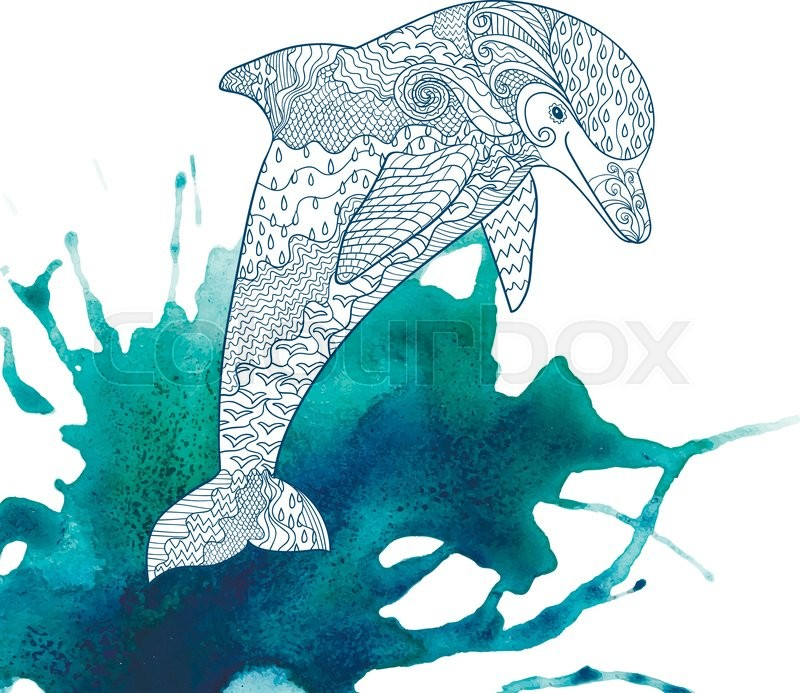 800x693 Happy Dolphin With High Details On Watercolor Background. Adult