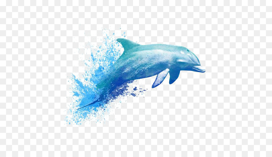 900x520 Watercolor Painting Drawing Dolphin Tattoo