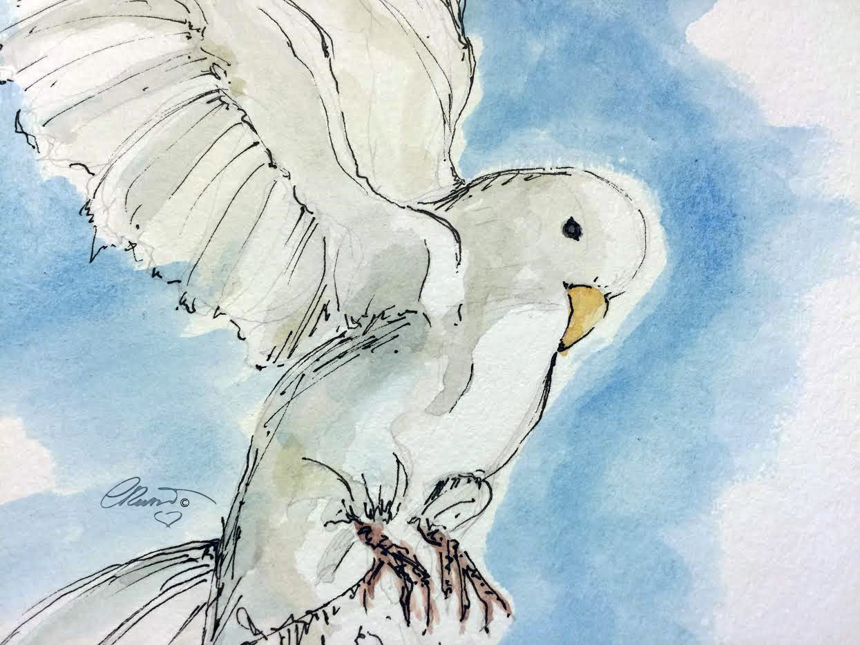 1245x934 Flying Dove Yesterdayafter