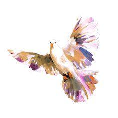 236x236 Image Result For Watercolor Dove Ideas Watercolor