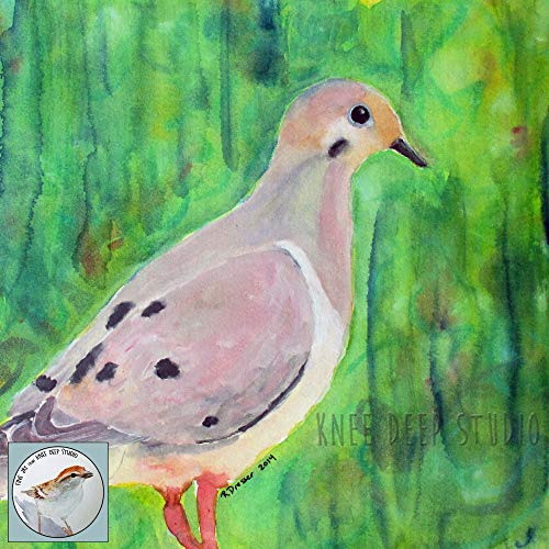 500x500 Mourning Dove Watercolor 9x12 Fine Art Bird Painting