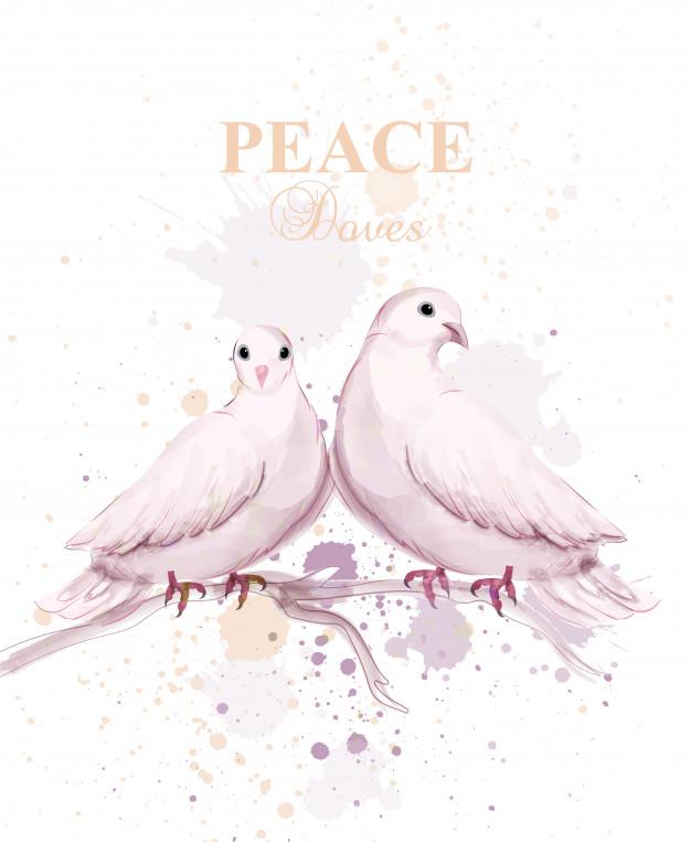 626x763 Watercolor Dove Birds Vector Premium Download
