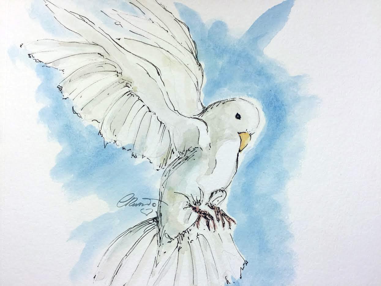 1245x934 White Dove