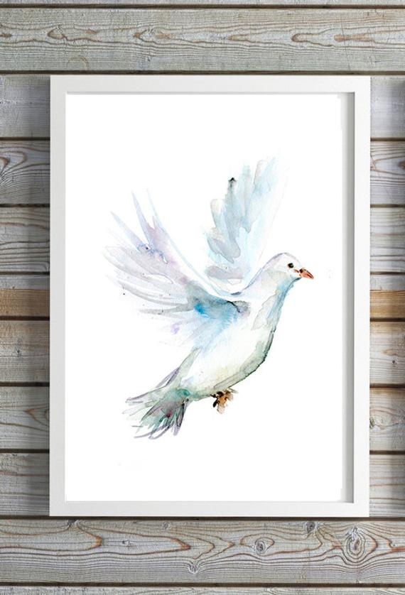 570x838 White Dove Art White Pigeon Painting Peace Dove Watercolor Etsy