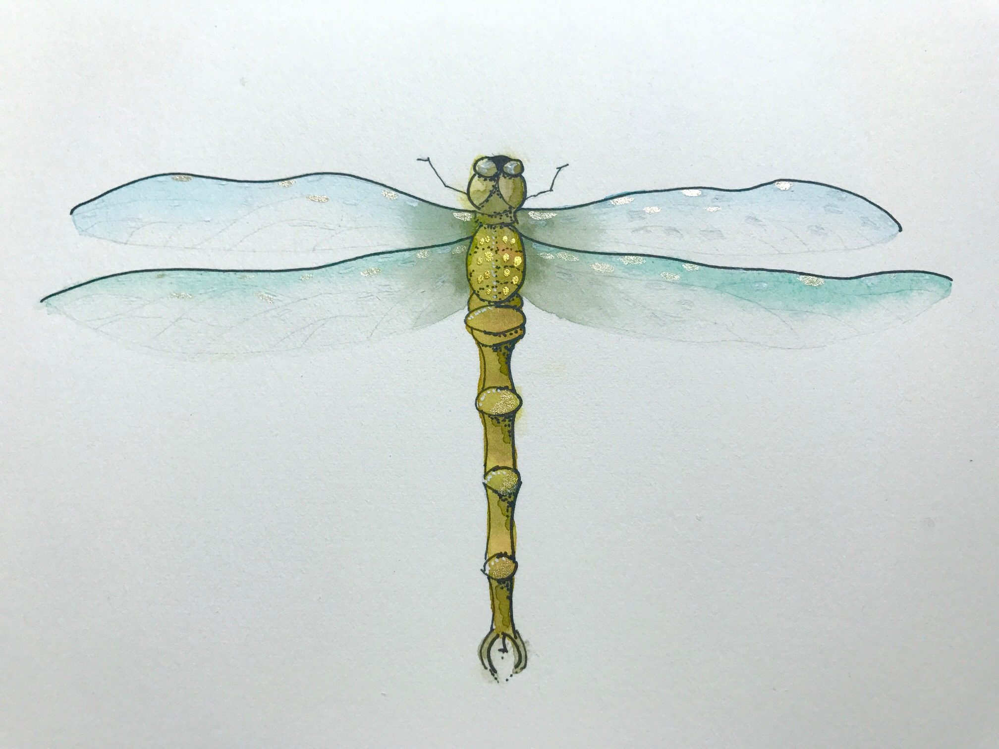 2016x1512 Painting Dragonflies A Step By Step Guide For Watercolor Dragonflies