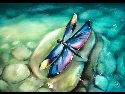 480x360 Watercolor Dragonfly Painting Demonstration