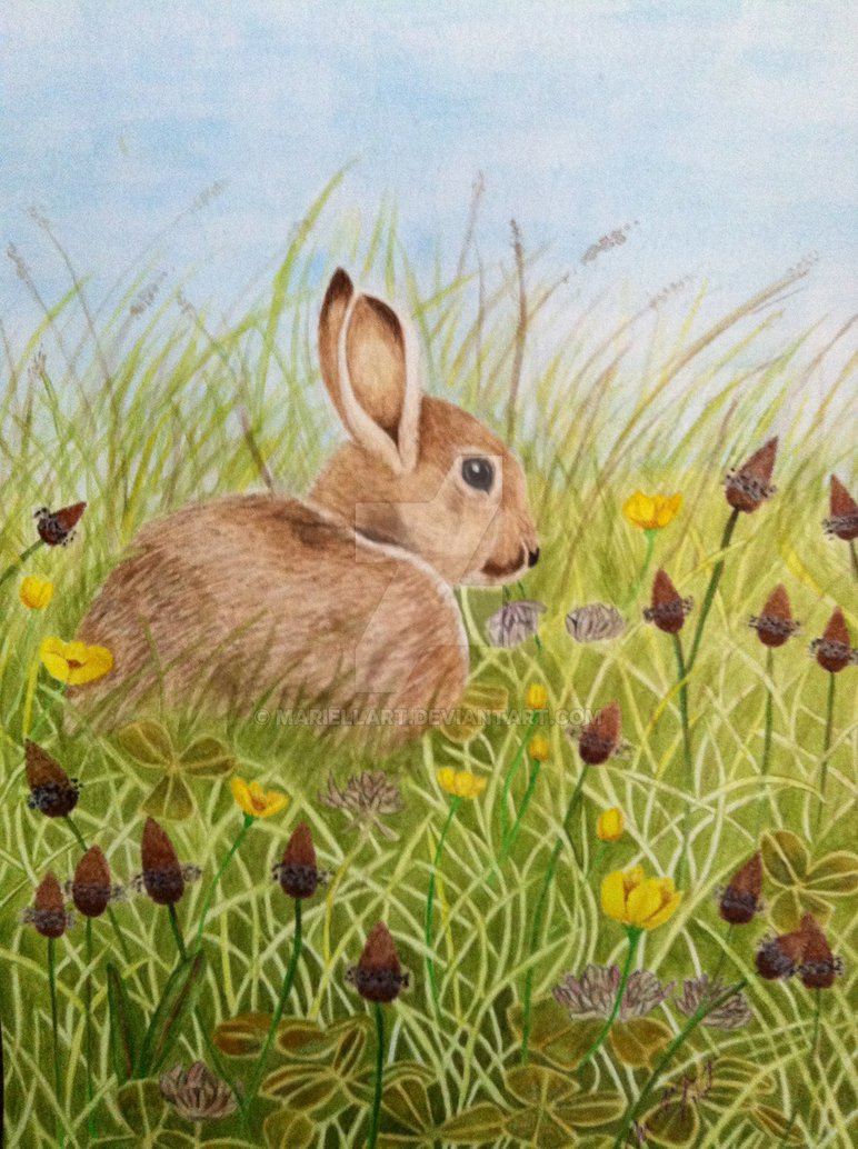 772x1034 Easter Bunny (Watercolor Painting) By Mariellart