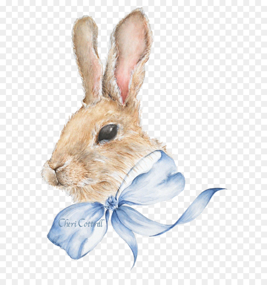 900x960 Easter Bunny Hare Domestic Rabbit