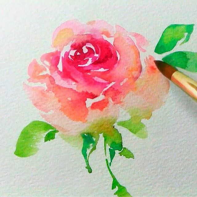 640x640 Watercolor Flower Ideas Awesome 17 Best Ideas About Easy