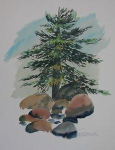 230x300 Igor Ziembrowski Original Signed Watercolor Evergreen Tree Spruce