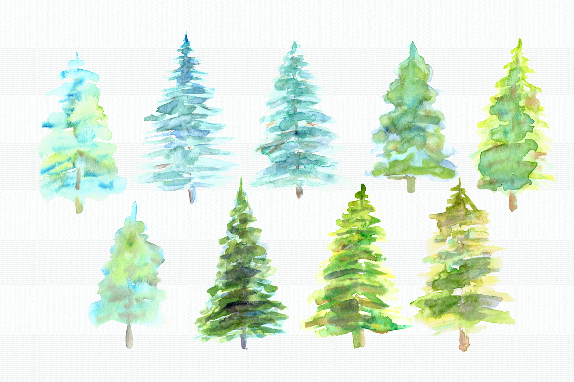 1160x772 Watercolor Pine Trees Clip Art