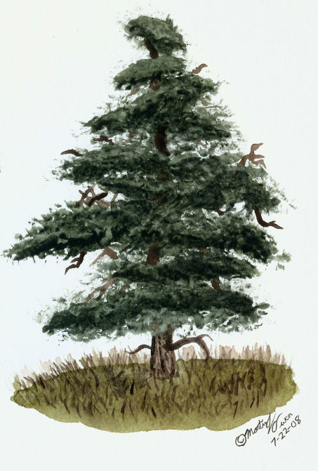 453x671 Watercolor Tree Test V By Eclipsis