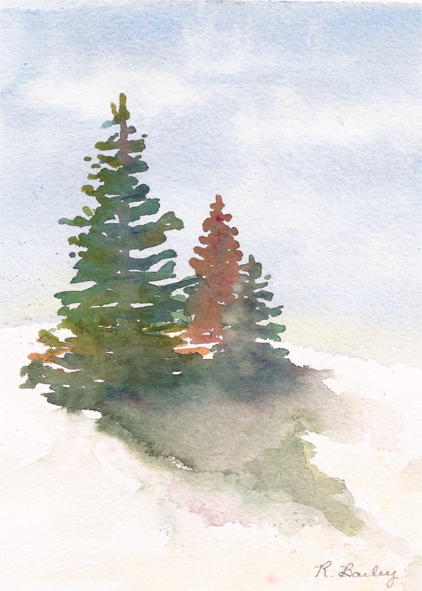 1451x2029 Evergreen Trees Ruth Bailey, Artist