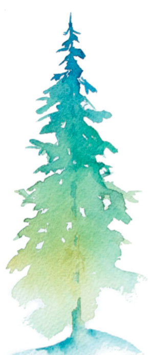 301x694 Beginning Watercolor Starting With Trees Quarto Knows Blog