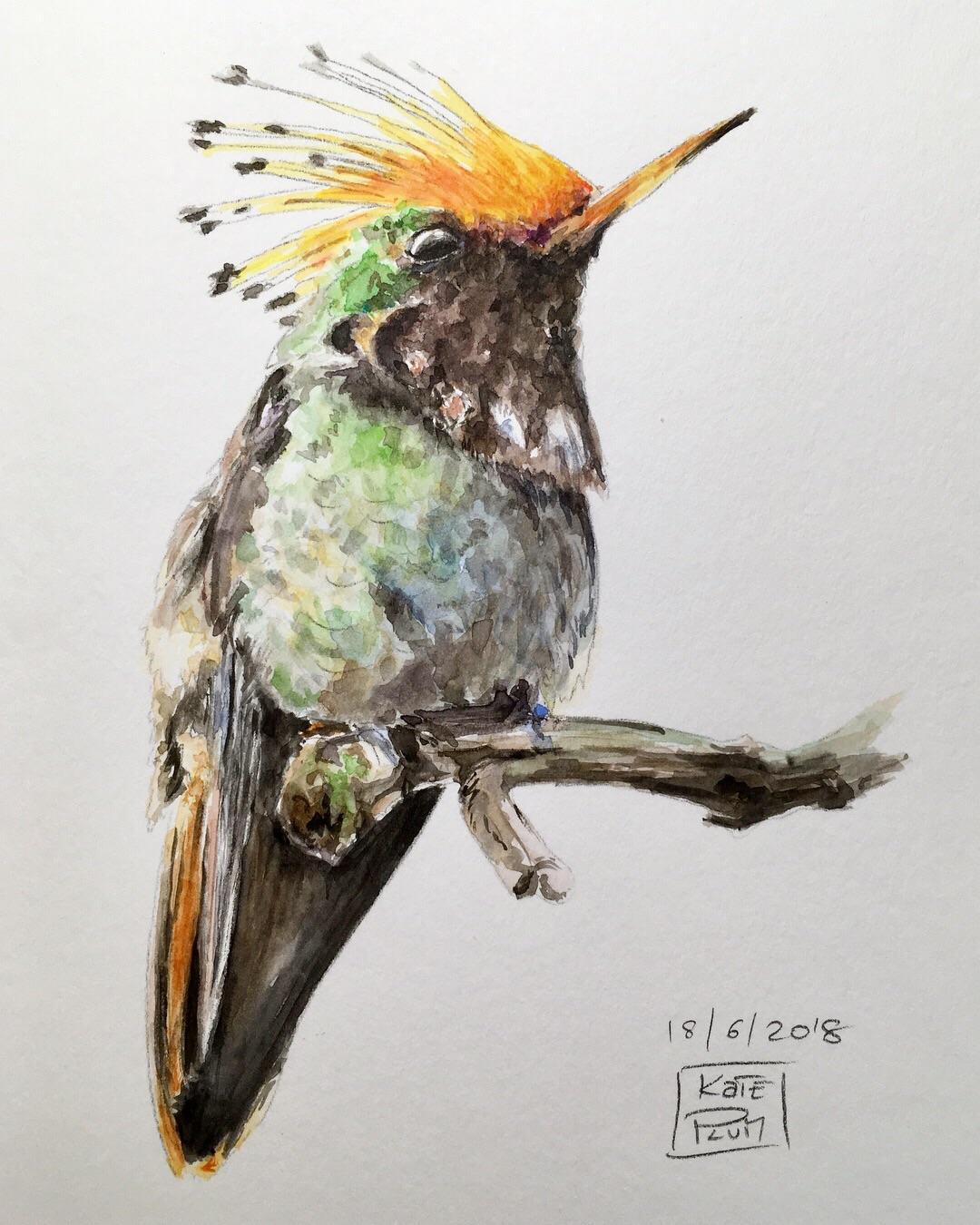 1080x1350 Everyday Watercolor Sketch (Watercolor, Sketchbook