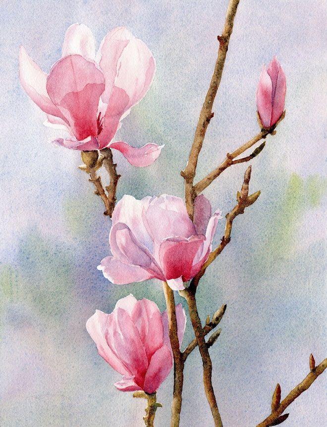 660x861 Famous Watercolor Flower Paintings Weneedfun Nuzhnoe Dlia