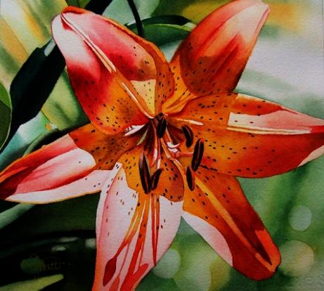 461x414 Floral Watercolor Paintings By Jacqueline Gnott
