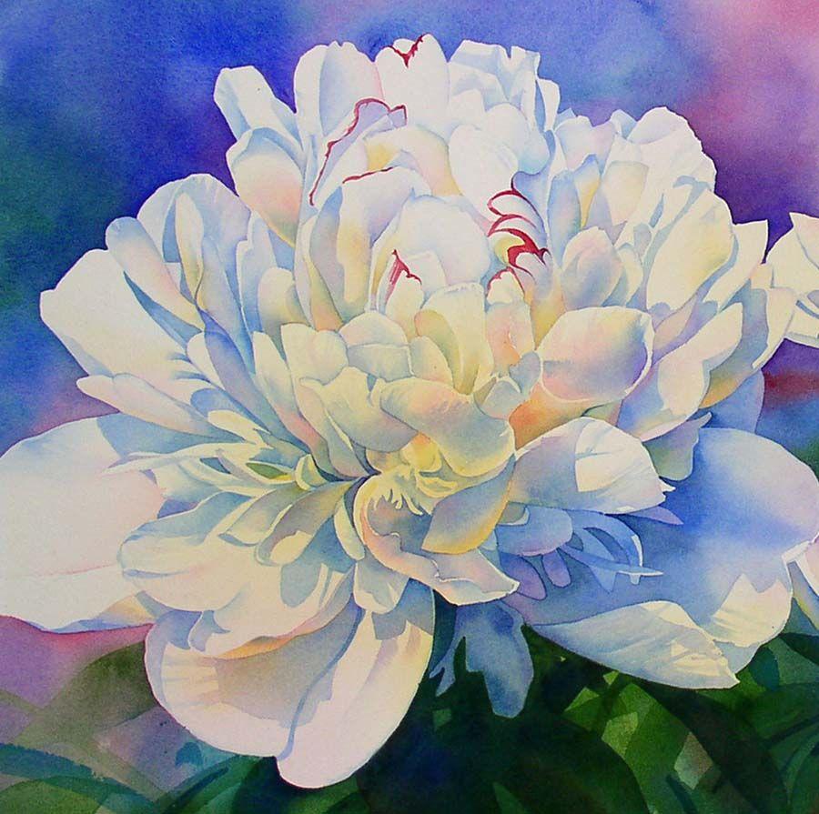 900x895 Barbara Fox ~ Watercolor Painter Art Paintings