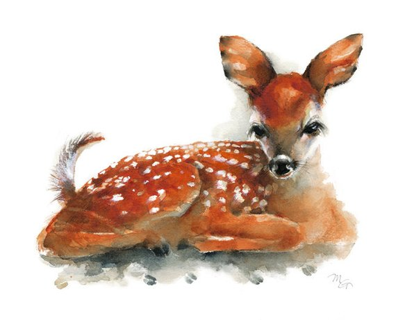 570x461 Deer Fawn Giclee Print Of Watercolor Painting. Art Print. Etsy