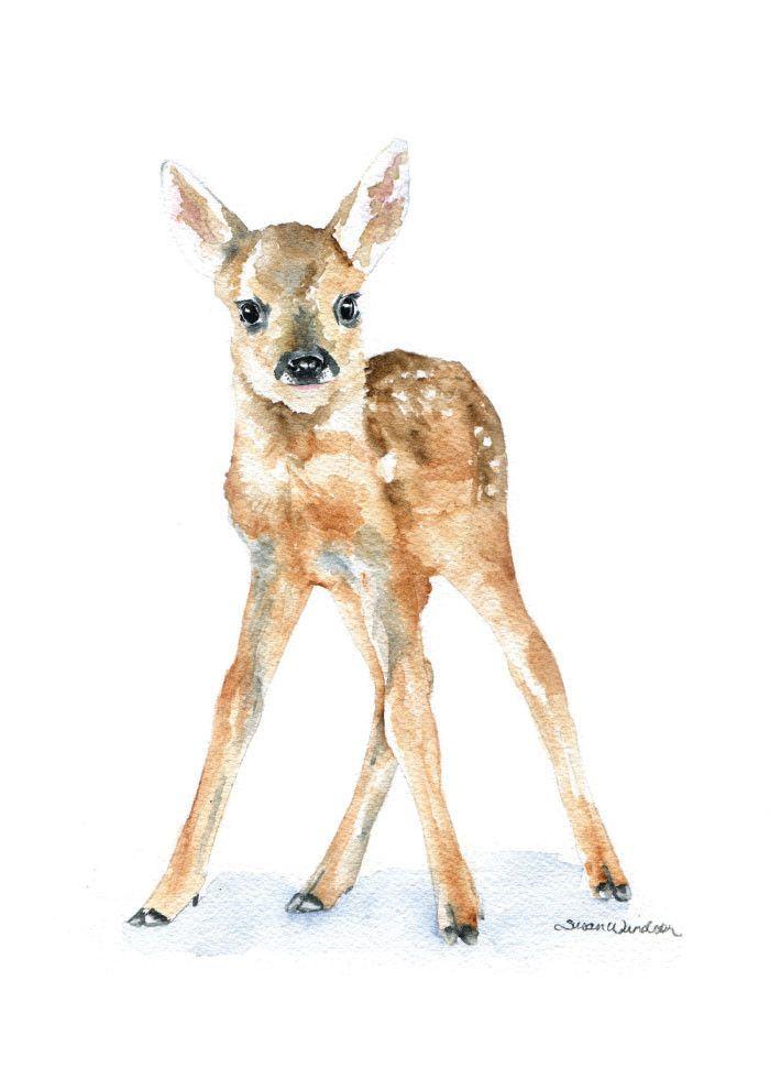 700x980 Deer Fawn Watercolor 1 Susan Windsor Watercolors