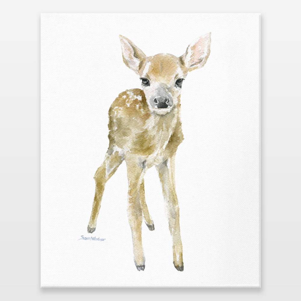 1000x1000 Deer Fawn Watercolor Wrapped Canvas Print By Susanwindsor On