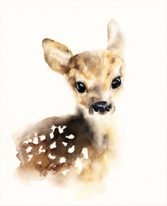 570x703 Fawn Watercolor Print Etsy