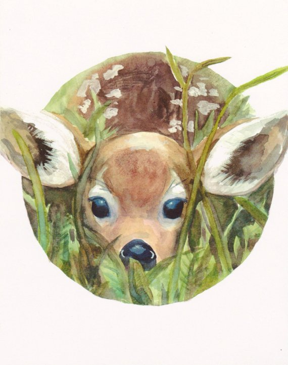 570x722 Fawn In High Grass Print Deer Watercolor Nature Cute Etsy