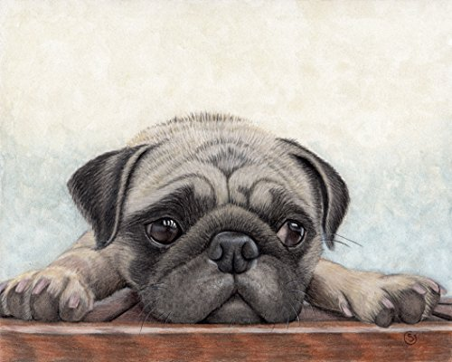 500x400 Pug Dog Fawn Puppy Pup 8x10 Painting Watercolor Sherry Goeben