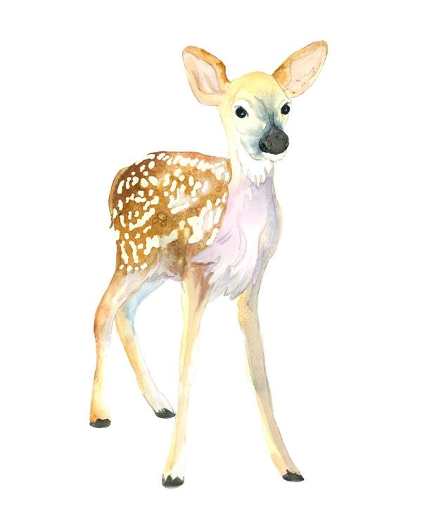 600x750 Watercolor Rachel Parris Illustration