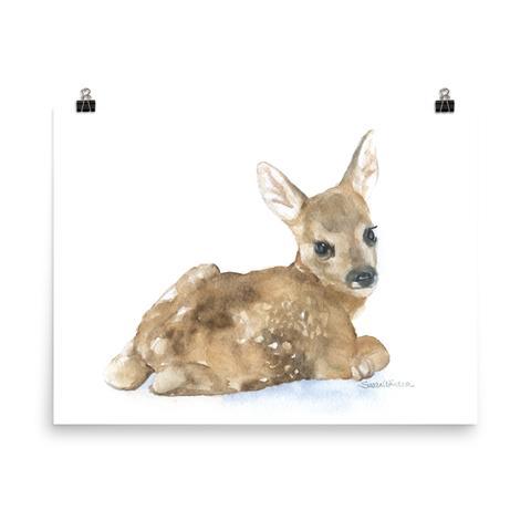480x480 Animals Susan Windsor