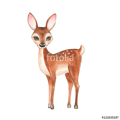 500x500 Baby Deer. Hand Drawn Cute Deer. Cartoon Illustration, Isolated On