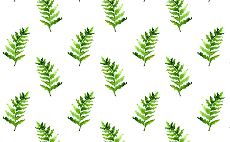 470x291 Fern In Watercolor On The White Wallpaper