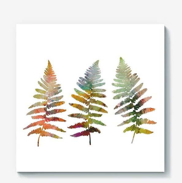 594x599 Fern Leaves Illustration In Watercolor Design Bundles