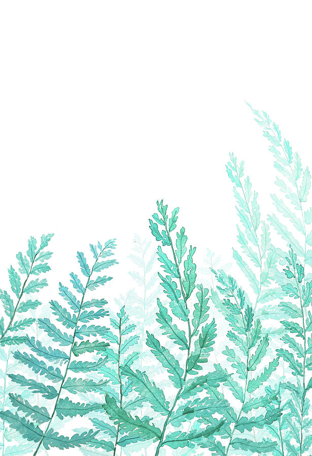 615x900 Green Fern Watercolor Painting By Color Color