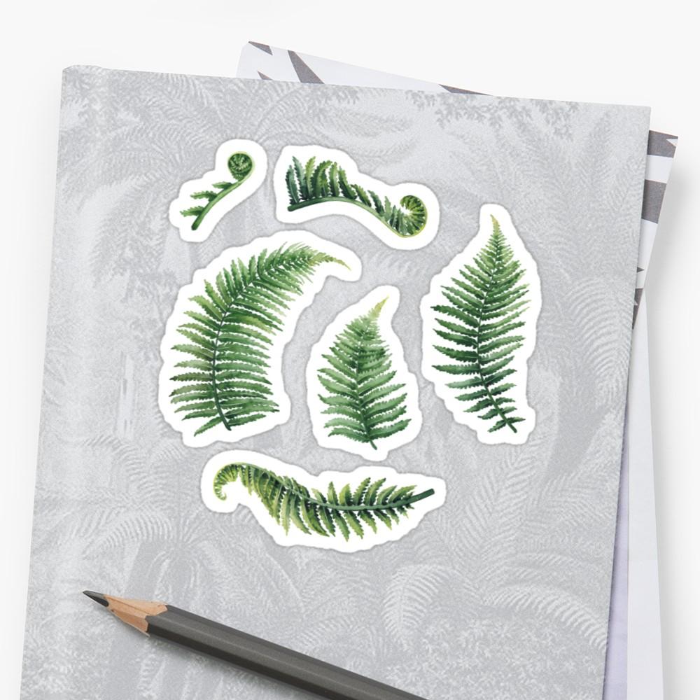 1000x1000 Watercolor Fern Leaves Stickers By Ekaterina Glazkova Redbubble