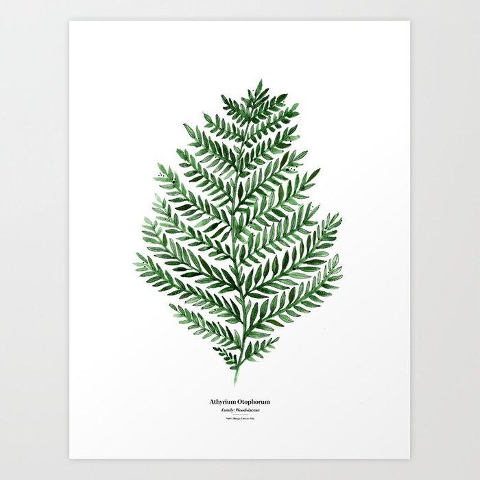 700x700 Botanical Iii