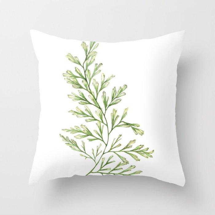 700x700 Fern Leaf Watercolor Painting Throw Pillow By Jennipirmann Society6