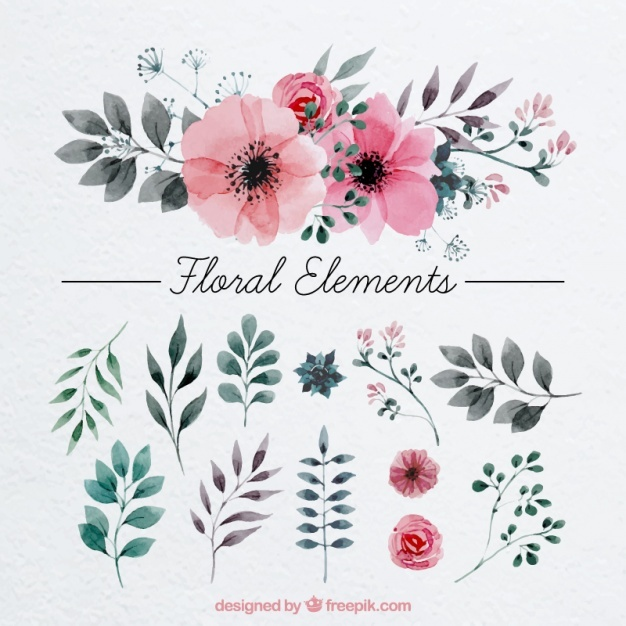 626x626 Flower Vectors, Photos And Psd Files Free Download