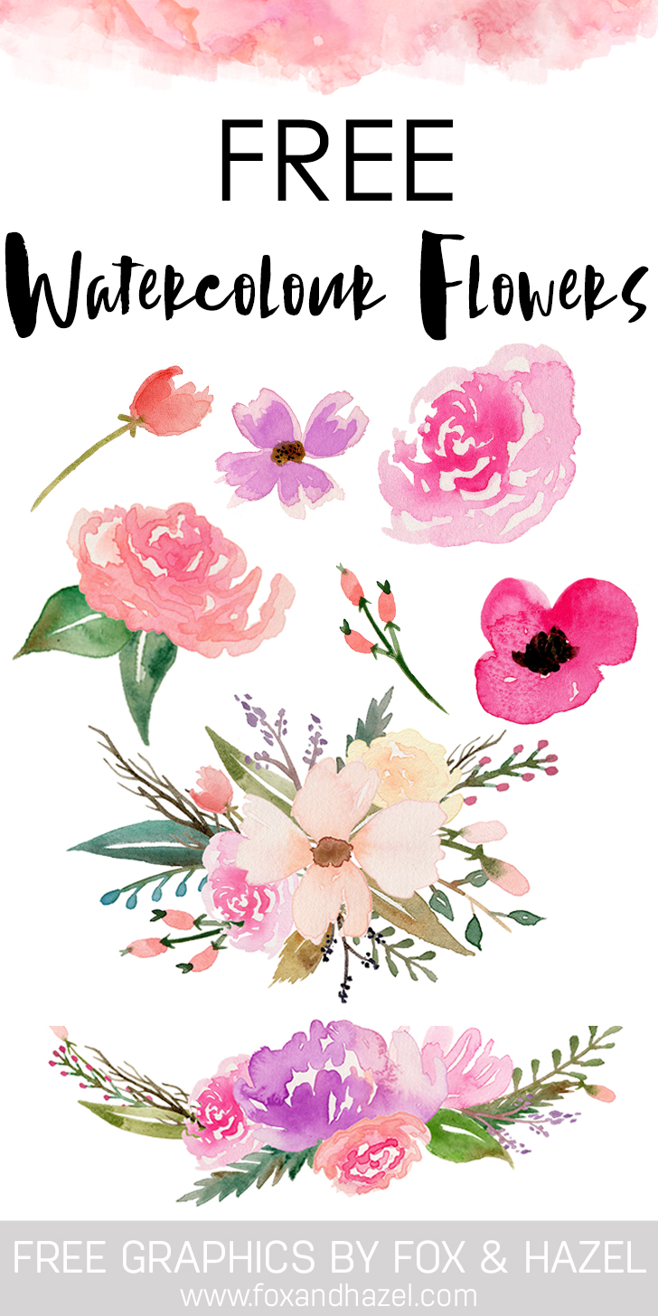 728x1456 A Collection Of Free Watercolor Floral Elements