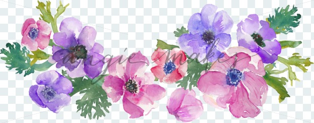 623x244 Download This Cute Bunch Of Watercolor Anemones Clip Art