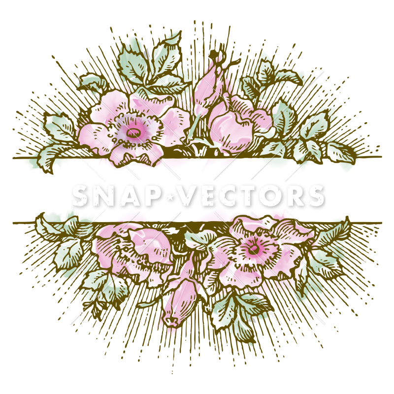 800x800 Vector Clipart Watercolor White Flower Frame