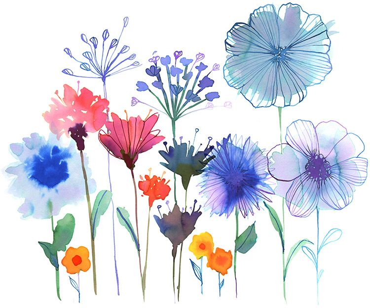 750x624 Wildflower Garden Margaret Berg Art Www.margaretberga